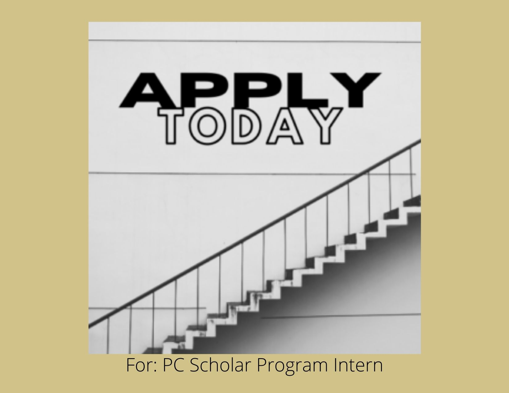 WE'RE HIRING! PC SCHOLARS INTERN 2020